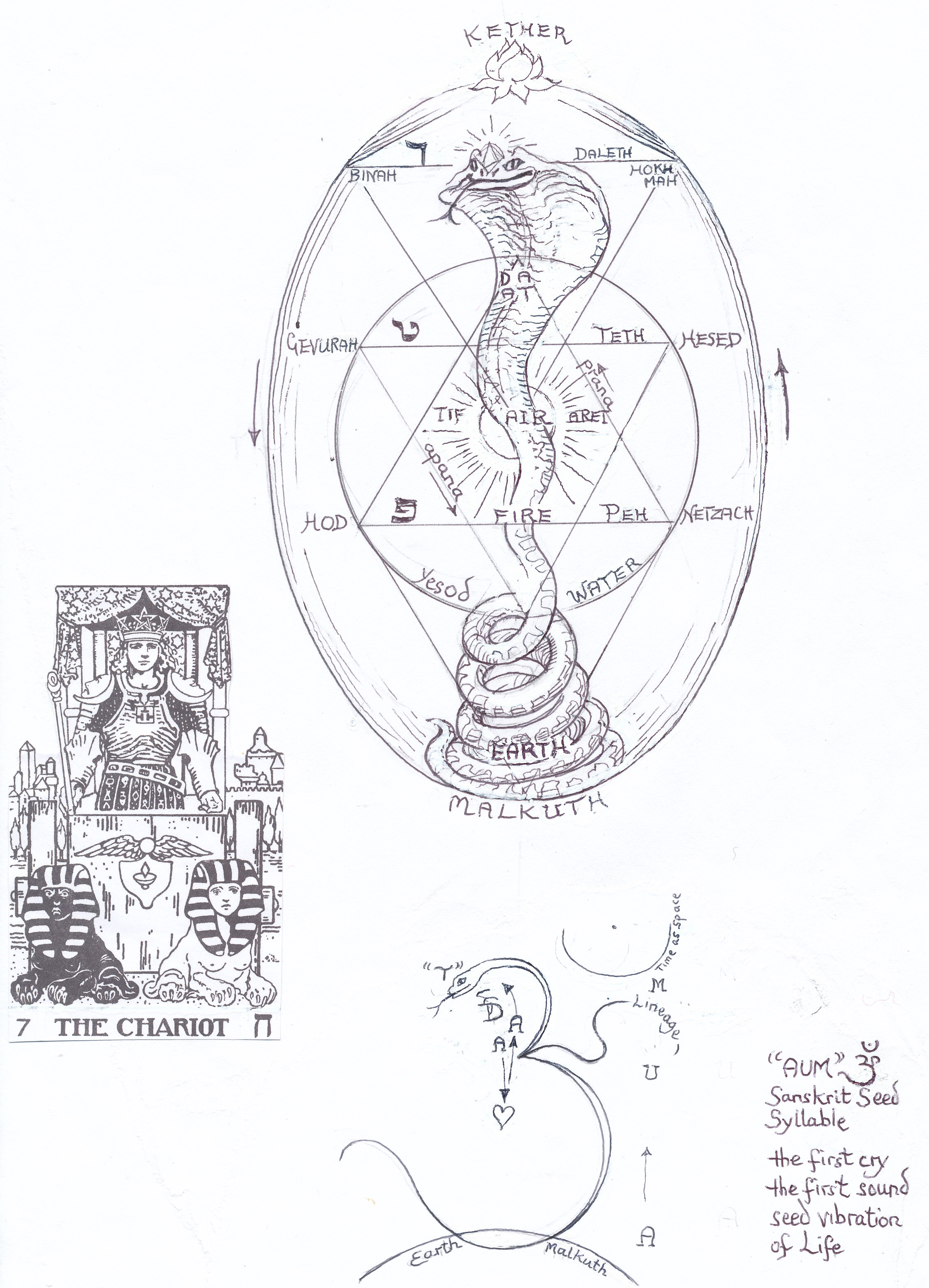 The Seven Year Cycles On The Tree Of Life Janeadamsart Each sefirah (singular for sefirot) can be described as a type of spiritual light, and as the revelation of an aspect of the creator. seven year cycles on the tree of life
