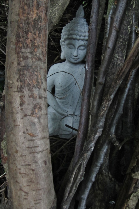 Meditation - the withdrawn Buddha