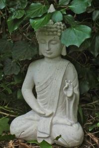 snowdrop buddha
