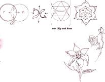 1 Kabbalah Lily rose