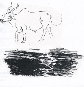 cow, dark & light