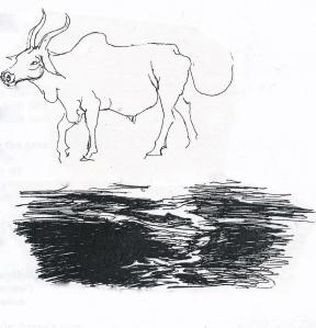cow, dark & light