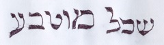 Intelligence of Nature, hebrew letters