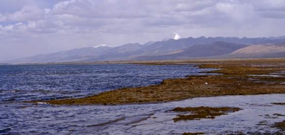 simikot kailas manasarovar, www.adventuregeotreks.com