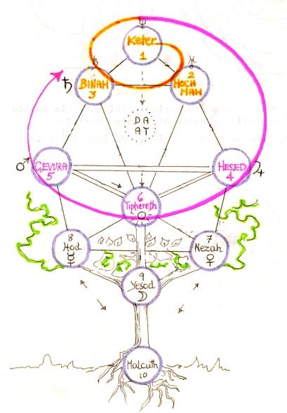 15 spiral Tree