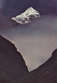 20 mountain magendovid