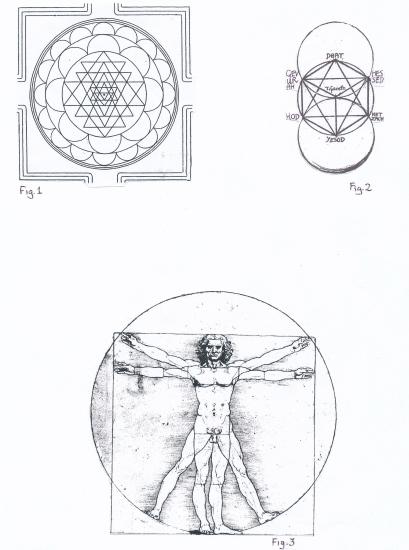 41 - Sri Chakra & Vitruvian