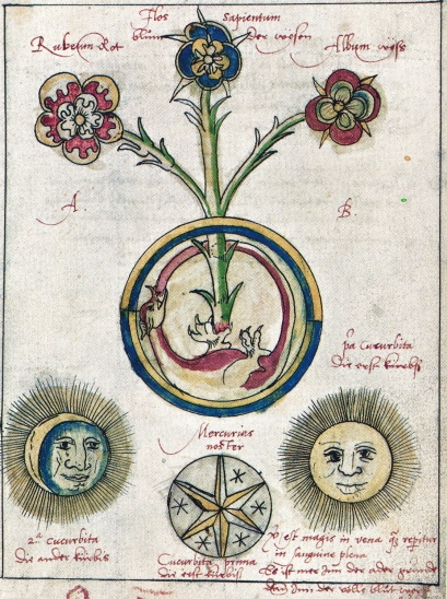 Ourobouros flower - Roob Alchemy&Mysticism