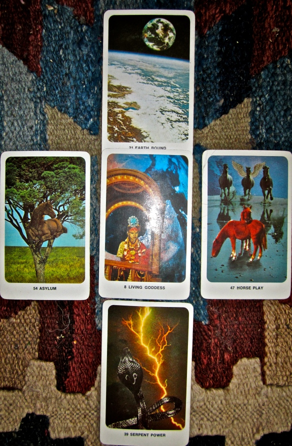 Secret Dakini Oracle spread, 15 June 2013