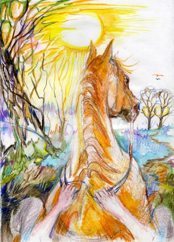 Sun steed