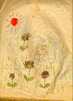 dandelions 55