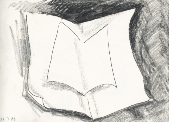 A winged book - an open one - is like just discovering someone.  I don't know their face yet.