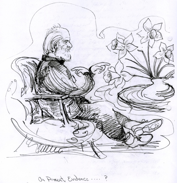 Daffodils in Douglas Harding, 1993