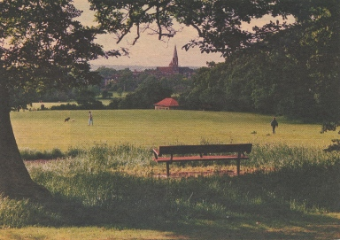 Hampstead Garden Suburb from the Heath Extension