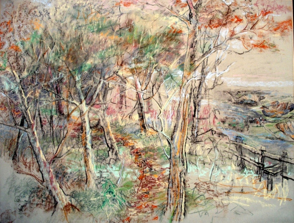 This is actually a drawing of someone I loved.  But it is a view from the woods near Grubstreet, Limpsfield, down onto Broomlands and the quarries