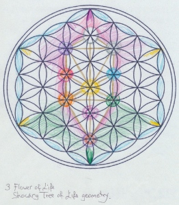 the tree in flower of life ja