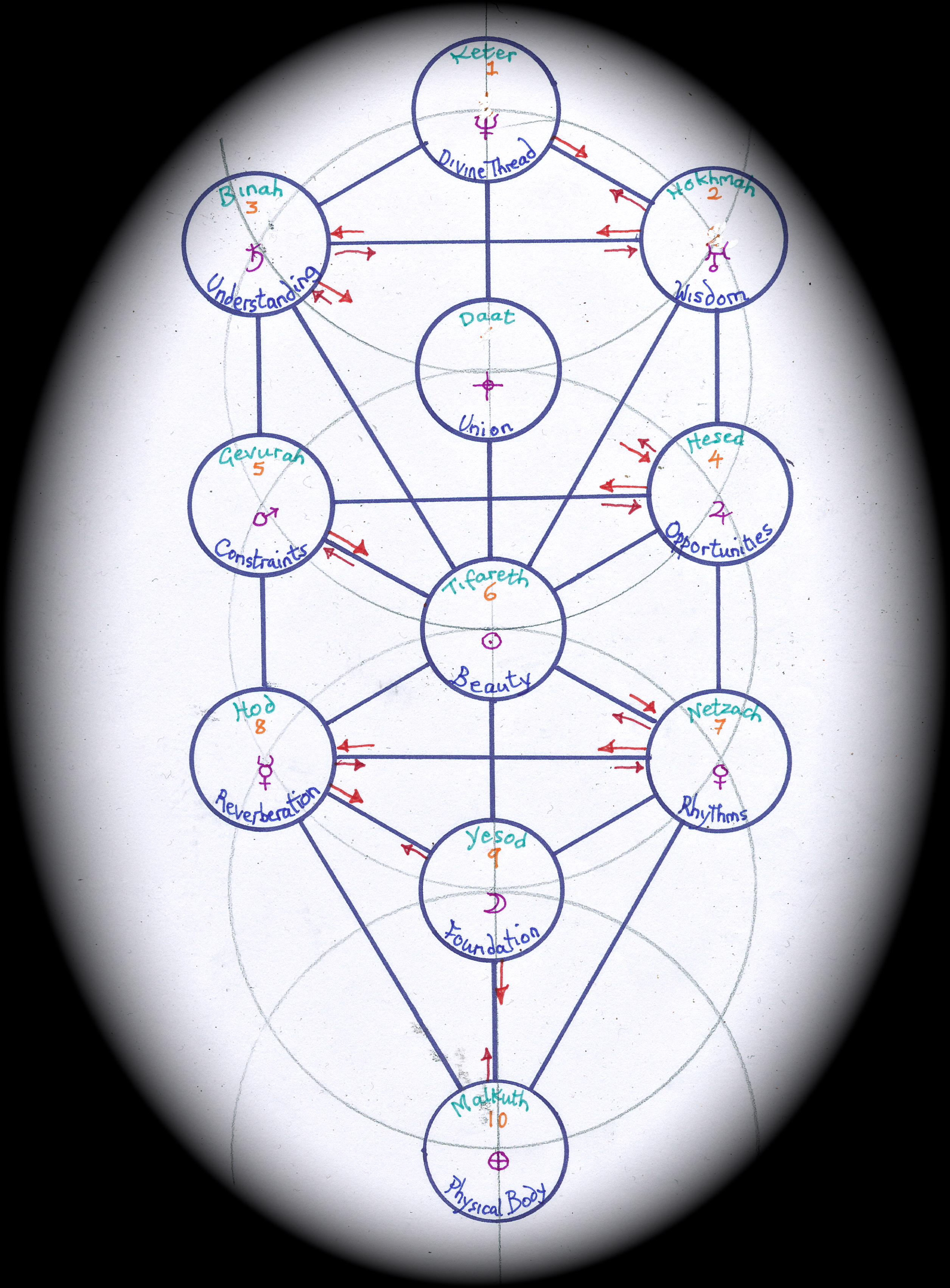 tree of life template 2 janeadamsart