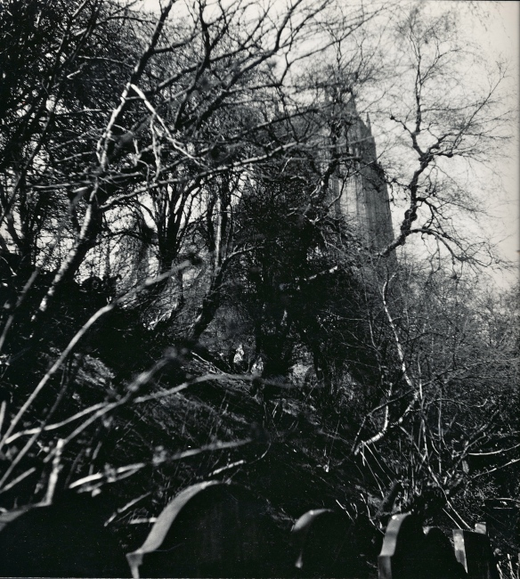 Cathedral's wild steep side