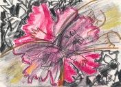 extending flower breathe, 1987