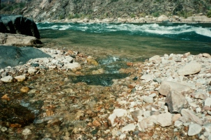 Brook going into the Colorado river, Grand canyon