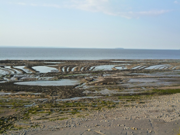 tide out, near Kilve