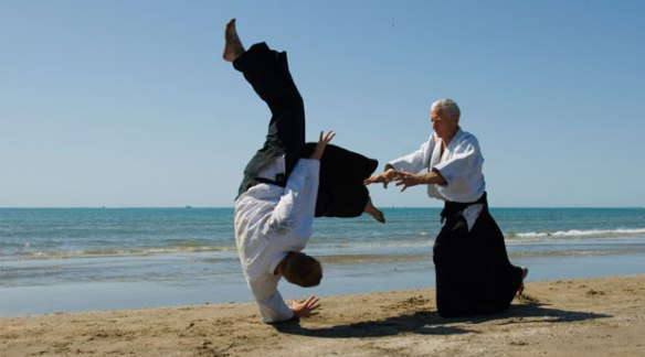 http://www.neboagency.com/blog/fight-fighting-tai-chi-chuan-approach-communication/
