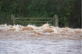 somerset floods, western gazette