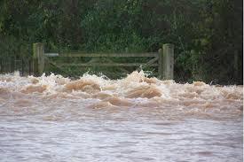 somerset floods, western gazette