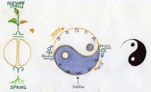 Tao Cycle
