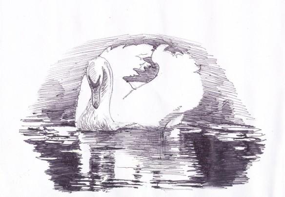 Hamsa Great Swan - jnana (wisdom) floats on bhakti (dedication)