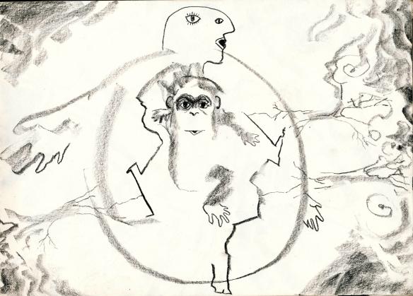 monkey gaia