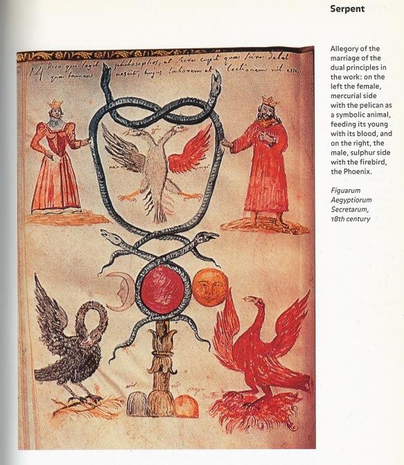 Pelican & Phoenix, Alexander Roob