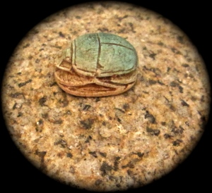 scarab on granite