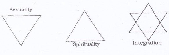sex spirit integr