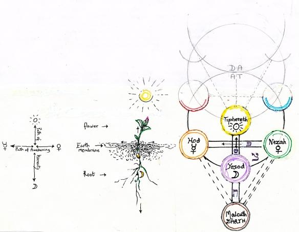 Paths of Awakening