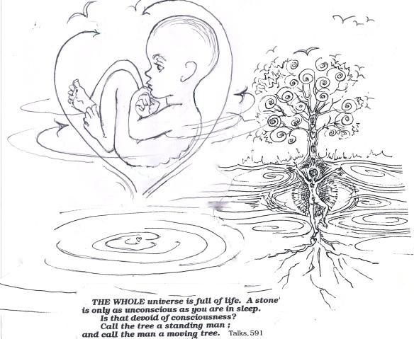 ramana embryo