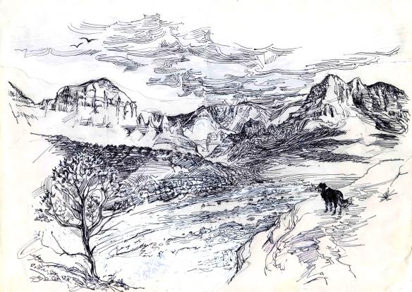 Wolfie in sedona landscape