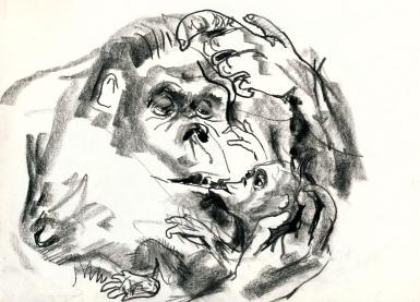 a monkey mum