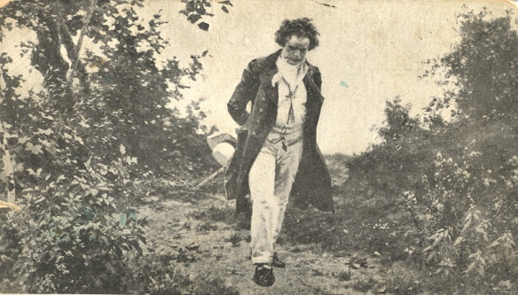 Beethoven walk: by Julius Schmid