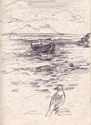 dboat and gull2006