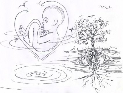 9 ramana embryo