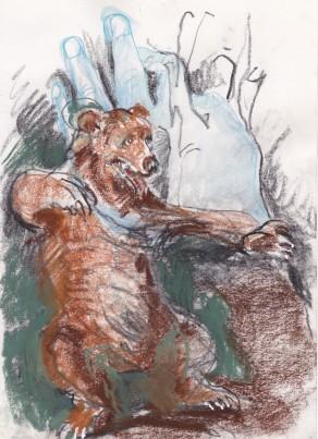 13a bear 1
