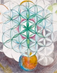 detail, flower of life